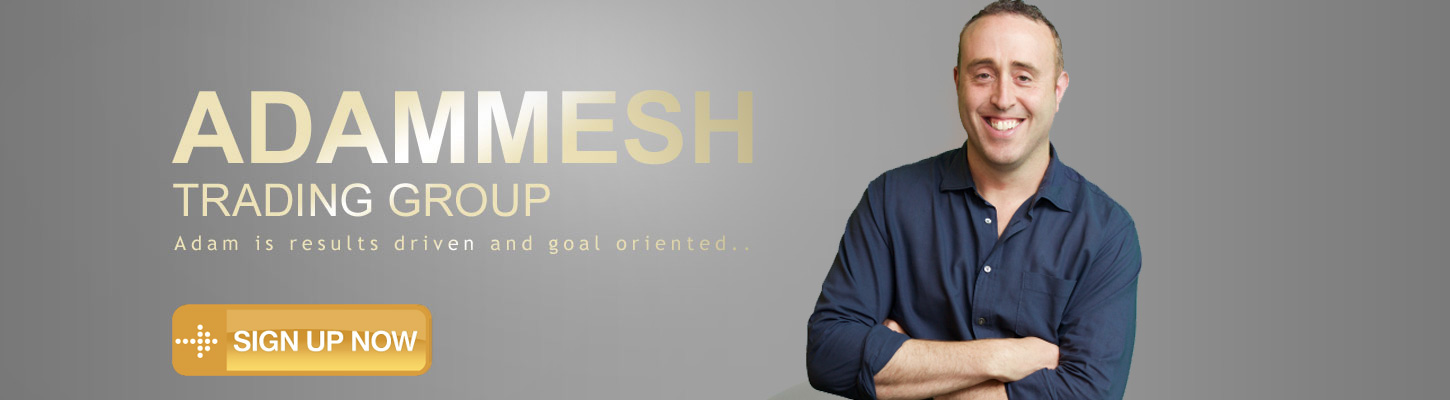 ADAM MESH TRADING GROUP - Adam is results driven and goal oriented