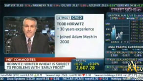 Text Box: Pic of Todd on CNBC